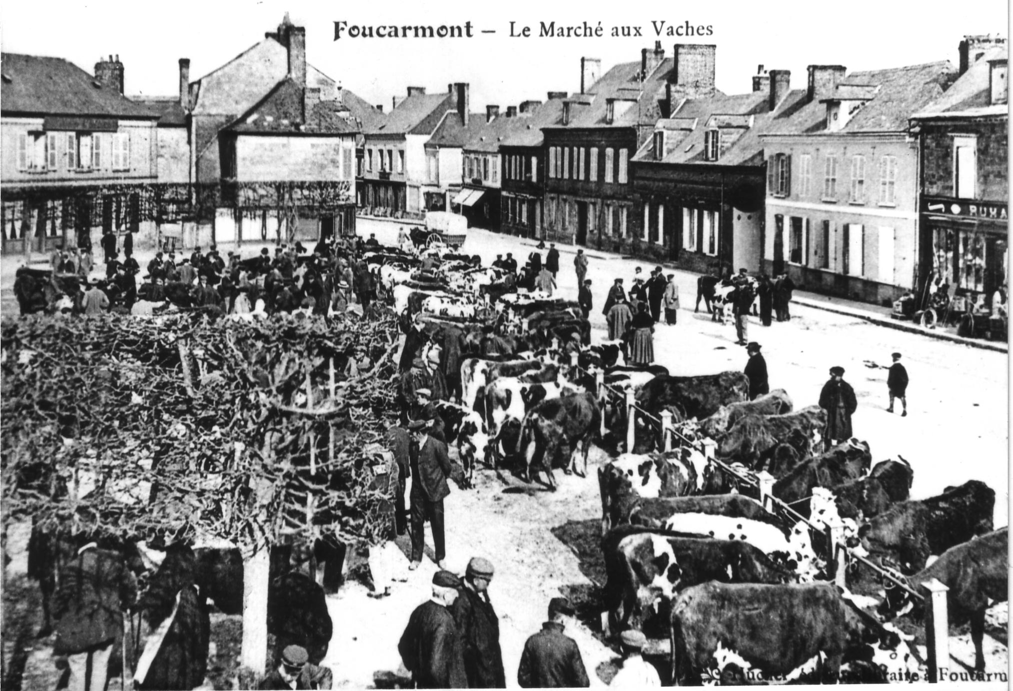place-du-marche-aux-vaches-2